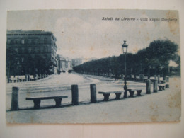 Livorno -  Saluti Da Livorno - Viale Regina Margherita - Ed. Pilade Soranzo - Livorno
