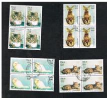 ITALIA  REPUBBLICA - CAT.UNIF.2075.2078 - 1993 ANIMALI DOMESTICI: GATTI   IN QUARTINA USATA (°) - 6. 1946-.. Repubblica