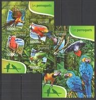 ST234 2015 GUINEE GUINEA FAUNA BIRDS PARROTS LES PERROQUETS 1KB+1BL MNH - Papagayos