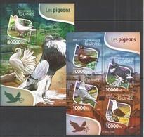 ST236 2015 GUINEE GUINEA FAUNA BIRDS LES PIGEONS KB+BL MNH - Pájaros