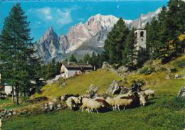 Cartolina Di Courmayeur ( Aosta ) Chiesetta Del Planpincieux - Aosta