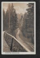 AK 0365  Semmering - Lichtensteinstrasse / Verlag Kleinhans Um 1920 - Semmering