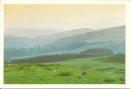 Regno Unito, United Kingdom, KirKcubrightshire, Scozia, The Glenkens - Kirkcudbrightshire