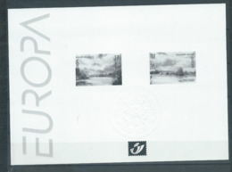 Belgique Feuillet N/B Europa 1999 Neuf - Black-and-white Panes