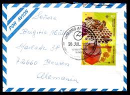 LETTRE EN PROVENANCE DE L'ARGENTINE - THÈME APICULTURE - ABEILLES - PAR AVION - - Bienen