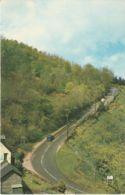 Postcard - Porlock Hill  Card No..pt6139 Unused Very Good - Cartes Postales