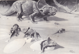 Postcard - Protoceratops - A Plant Eating Dinosaur About 2m Long, Lived About 90 Million Years Ago - Card No. G85 - VG - Cartes Postales