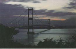 Postcard - The Seven Bridge By Night  Card No..pt11142 Unused Very Good - Cartes Postales