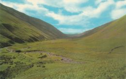 Postcard - The Moffat, Selkirk Road Nr The Grey Mare's Tail Card No.pt36067 Unused Very Good - Cartes Postales