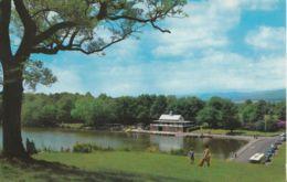 Postcard - The Lake, LLandrindod Wells Card No..pt23838 Unused Very Good - Cartes Postales