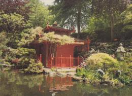 Postcard - The Japanese Garden, The Tea House - Compton Acres. Poole Dorset - VG - Cartes Postales