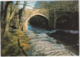 Postcard - New Bridge, Over The River Dart - Card No. DNO. 10 - VG - Cartes Postales