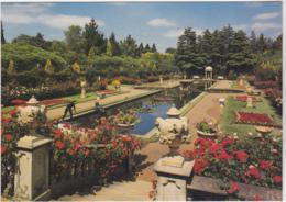 Postcard - The Italian Garden In Mid-Summer, Compton Acres, Poole, Dorset - VG - Cartes Postales
