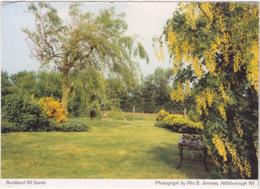 Postcard - Rockland All Saints - Photo By Mrs B Jenness - VG - Cartes Postales