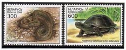 Belarus 2003 .Reptiles: Snake, Turtle. 2v: 300, 600.   Michel # 481-82 - Bielorussia