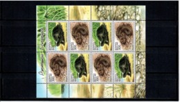 Belarus 2003 . Reptiles: Snake, Turtle. Sheetlet Of 8 (4 Sets).  Michel # 481-82 KB - Bielorussia