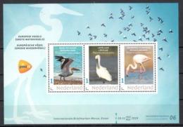Nederland Briefmarken-Messe Essen 2019 Beurszegel Nr 6 Thema: Europese Vogels: Pelikaan, Lepelaar, Flamingo - Periodo 2013-... (Willem-Alexander)