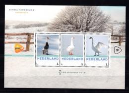 Nederland 2018  Eindejaarsbeurs Barneveld Nr 9: Thema Vogels, Eenden, Duck, Loopeend, Gans, Zwaan - Periodo 2013-... (Willem-Alexander)