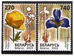 Belarus 2003 . Flowers. 2v: 270, 740.  Michel # 490-91 - Bielorussia
