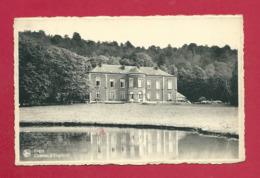 C.P. Engis =  Château  D' ENGIHOUL - Engis