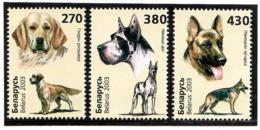 Belarus 2003 .Dogs. 3v: 270, 380, 430 .  Michel # 502-04 - Bielorussia