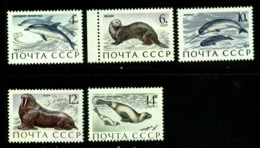 Russia  USSR 1971  Mi 3870  MNH - 1923-1991 USSR