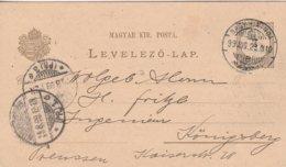 Hongrie Entier Postal Privé Pour L'Allemagne Thème Abeille - Postal Stationery