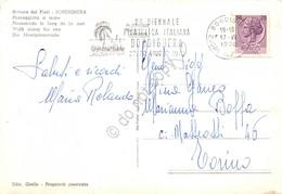 Cartolina Bordighera Passeggiata Timbro A Targhetta Biennale Filatelica Bordighe - Imperia