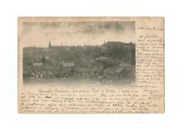 Pâturages  -  Panorama - Vue Prise Du Terril De Roinge (1901). - Colfontaine