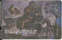 TURKEY - Hatay Muzesi/Hatay(30 Units), 09/01, Used - Turquie
