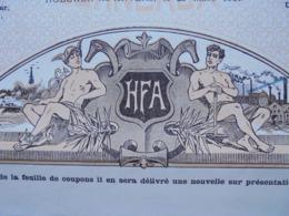 BELGIQUE - HOBOKEN LEZ ANVERS 1901 - HAUTS FOURNEAUX D'ANVERS - ACTION ORDINAIRE - BELLE ILLUSTRATIN - Aandelen