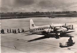 """AEROPORT DE PARIS - LE - BOURGET / ARRIVEE D' UN """" VIKING """" DE LA Cie B . E . A . - 1946-....: Era Moderna"""