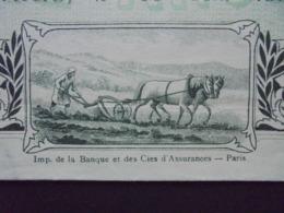 MAROC - PARIS 1911 - STE FONCIERE FRANCAISE AU MAROC - PART BENEFICIAIRE - BELLE VIGNETTE - Aandelen
