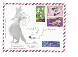 Nouvelle Caledonie Lettre Cachet Kuto Ile Des Pins 1970 Timbre N° 348 342 359 - Covers & Documents