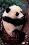 JAPON. FAUNA. OSO PANDA - PANDA BEAR. Yu-Yu The Panda. JP-230-153 A. (191) - Tarjetas Telefónicas