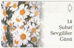 TURKEY - St.Valentine's Day/Flowers(30 Units), 02/03, Used - Turquie