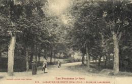 Les Pyrénées (4e Serie ) LABARTHE DE NESTE (Htes Pyr) Route De Lannemezan Promeneuses Labouche RV - Frankreich