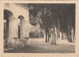G28- PHOTO - EDITEUR MANIEZZI , NICE - SAINT CASSIEN - LA CHAPELLE ET LES CYPRES - (2 SCANS) - Places