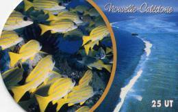 """Telecarte De Nouvelle Caledonie NC 146 """" Lagon Caledonien """" Avec Bord Arrondi ! - Nouvelle-Calédonie"""