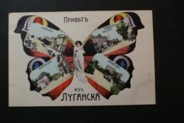 Russie - Papillon / Butterfly - Russie