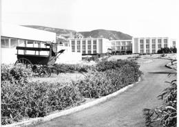 """Photo Algérie. Oran Les """"Andalouses"""", Vaste Complexe De Vacances Et De Tourisme 1980. Photo Du Père G. Beeckmans - Afrique"""