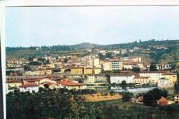 20-0247 RIGNANO SULL'ARNO FIRENZE - Firenze (Florence)