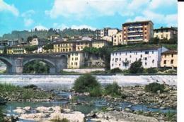 20-0248 RIGNANO SULL'ARNO FIRENZE - Firenze (Florence)