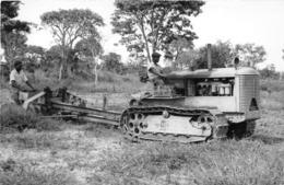 ANGOLA  - Province Portugaise De L'Afrique Occidentale - Colonat Indigène De CACONDA - Travaux Agricole - Angola