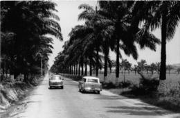 ANGOLA  - Province Portugaise De L'Afrique Occidentale - Tronçon De La Route Entre Lobito Et Benguela - Angola