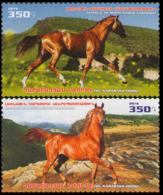 2016Karabakh Republic129-130Karabakh Horses - Horses