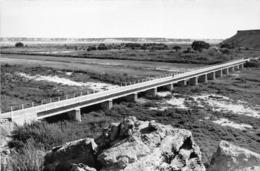 ANGOLA  - Province Portugaise De L'Afrique Occidentale - MOCÂMEDES  -  Pont Sur La Rivière Giraul - Angola