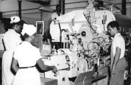 ANGOLA  - Province Portugaise De L'Afrique Occidentale -  LUANDA  -  Aspect Partiel D'une Fabrique De Tabac - Usine - Angola