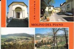 20-0252 MOLINO DEL PIANO FIRENZE - Firenze (Florence)