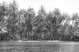 ANGOLA  - Province Portugaise De L'Afrique Occidentale -  LUANDA  -  Ile De Mussulo - Angola